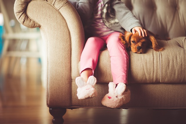 pejsek s holčičkou na gauči.jpg