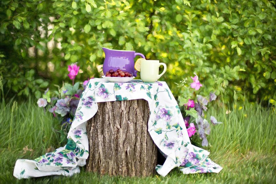 káva_na_zahradě